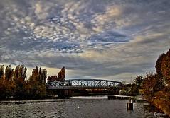 Soir d'automne sur le canal (DOMVILL) Tags: arbre automne canal ciel cygne domvill eau france nord nuages pont wwwflickrcompeoplevildom wwwflickrcomphotosvildom ladeûle