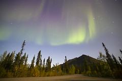 Northern lights (JR-pharma) Tags: alaska usa united october northwest north west automne fall states america roadtrip road trip photoroadtrip hiking hike 2015 french français nature aventure liberty liberté canoneos6d canon6d mark 1 canon eos 6d classic jrpharma daltonhighway dalton highway haul wiseman marioncreek marioncreekcampground northern lights northernlights aurora borealis auroraborealis