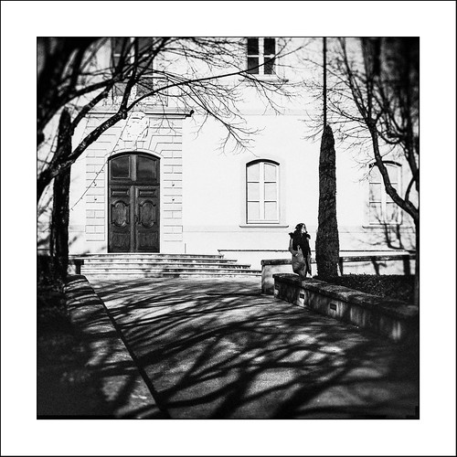 Au pays des Ombres / In the Land of Shadows #4