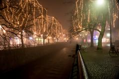 Fyris river in november (Eklandet) Tags: night river sverige sweden town tree uppsala forest fog mist foggy misty dimmigt dimma townscape cityscape city riverscene