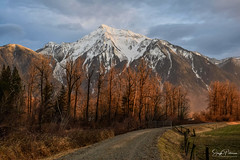 Cheam Peak - Agassiz, BC (SonjaPetersonPh♡tography) Tags: mountcheam cheampeak fraservalley agassiz bc britishcolumbia canada nikon nikond5300 mountainpeaks mountains mountainlandscape landscape scenic scenery winter 2019 nature trees forest fraservalleyregionaldistrict mtcheam snow peaks