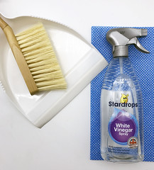 Cleaning stock photo (bmstores) Tags: clean cleaning essentials white vinegar spray words cleanliness tidy mess free no fuss brush dustpan wooden environment anti bacterial blue jay cloth dish bright gleam spring