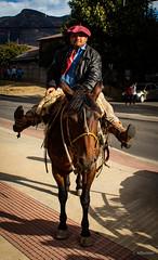 Coyhaiquino, Él Patagón (pocket.photographs1) Tags: coyhaique chile patagonia people hombre caballo caballos horse animals animales