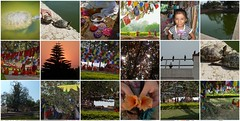 mayadevi3 (2) a very special place ! (belight7) Tags: maya devi lumbin nepal mosaic collage travel garden buddha monks prayer flags pond turtles trees puja birds holy buddhist