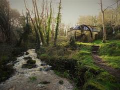 Peace (Angélique K.) Tags: nature verdure eau riviere arbre moulin