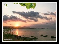 coucher de soleil(sunset) (hcortade) Tags: thailande oyage travel ile island samui monde world cth5 soir soleil coucherdesoleil sunset mer ciel sky nuages clouds arbre tree orange rouge eau groupenuagesetciel