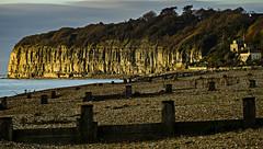Sunlight on Cliff End (ianbartlett) Tags: 365 outdoor wildlife nature birds flight monochrome sea sand water dogs groynes drone landscape light colour seal