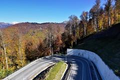 Подъем на Роза Плато (Oleg Nomad) Tags: сочи адлер роза пик плато горы осень небо лес sochi rosa mountains autumn forest sky travel