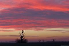 Magic morning (damianziel) Tags: pentax pentaxk50 pentaxart smc smcpda1855mmf3556alwr kitlens landscape landschaft krajobraz sky cielo colours color flickr digital ciel morning sunrise