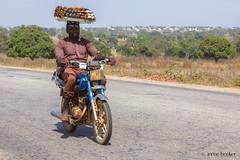 The Motorcycle Rider (Irene Becker) Tags: africa arewa imagesofnigeria kachia kaduna kadunastate nigeria nigerianimages nigerianphotos northnigeria southernkaduna westafrica northernnigeria village