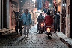 IAIAIAIA (Heinrich Plum) Tags: heinrichplum plum fuji xe2 xf35mmf2 marokko marrakech marrakesch morocco streetphotography streetphotographie street esel eseltransport donkey gegenlicht baklit gasse medina altstadt