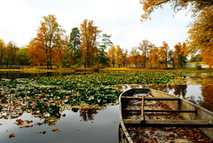 pond (Anselmo Portes) Tags: ceskykrumlov czechrepublic repúblicatcheca pond garden jardim lago nature natureza leaf leaves folhas água water barco boat