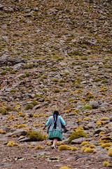 Bolivienne Sud Lipez_3814 (ichauvel) Tags: femme woman adulte marcher walking bouger moving aride dry sec végétationchétive rocaille avancer tresse paysage landscape exterieur outside sudlipez southlipez bolivie provincedepotosi bolivia amériquedusud southamerica amériquelatine voyage travel immensité wilde désertique bolivienne getty