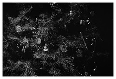 on my holiday bullshit (Joe Jesus) Tags: film filmphotography nikon f2 tmax tmax400 35mm nikonf2 december 2018 hc110 homedeveloping indiana