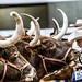 Stock show Longhorns 2009061.JPG