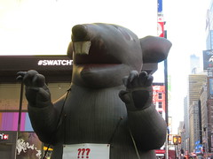 2019 Giant Strike Rat Balloon Corner of 45th St NYC 3699 (Brechtbug) Tags: 2019 giant strike rat balloon corner 7th ave 45th st times square new york city 03142019 nyc teeth claws rodent mouse fangs inflatable created 1990 by big sky balloons scab scabby manufactured near chicago illinois blow up blowup midtown manhattan march
