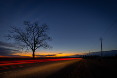 In the dark (Dan Fleury Photos) Tags: rural morning silhouette tree car cold winter sunrise greaternapanee quinte haybay napanee ontario canada cans2s