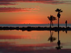 Stiltsville Dawn (joiseyshowaa) Tags: miami florida fl fla south water cape reflection palm silhouette trees tropical tropics morning dawn twilight clouds orange sky blue waves mirror history