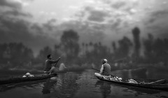 Gossip .. (tchakladerphotography) Tags: blackwhite bw boats lake water trees reflections people market floating dal sky clouds foggy misty atmosphere travel traditional tourism