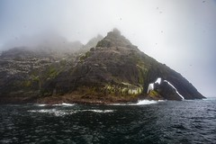 Little Skellig Island (Laura A Long) Tags: litttle skellig island birds sea fog ireland north atlantic ocean