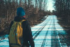 KRIS7212 (Chris.Heart) Tags: túra kéktúra okt hiking hungary forest winter tél erdő