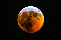Ravi_20190121DSC_1934 (suryakantan) Tags: total lunar eclipse nikon d800 nikkor20050056ed 500mm 56f origin summit nj usa
