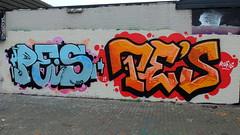 Schuttersveld - Pe's (oerendhard1) Tags: graffiti streetart urban art rotterdam oerendhard crooswijk schuttersveld pe pes