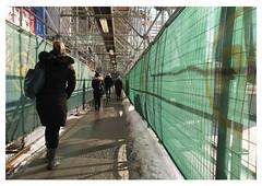 under the scaffolding (mcfcrandall) Tags: pedestrians scaffolding screen green sidewalk pavement people walking winter yongest toronto metal patterns shadows lines