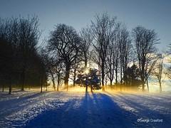 Eglinton Park Snow Trees1 (g crawford) Tags: eglinton eglintoncountrypark eglintonpark park ayrshire northayrshire kilwinning crawford snow white winter weather cold sun frost sunset sundown orange yellow shadow