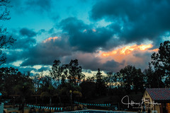 After the Rains-3922 (Jeffrey Balfus (thx for 3.3 Million views)) Tags: sonyalpha saratoga california unitedstates us sonyilce6300 sony6300 mirrorless sonyemount sonyfe2470mmf28gm sel2470gm