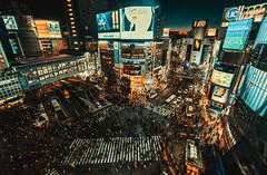 20190126-DSC08987 (Edge Lee) Tags: tokyo 東京 jpn japan 日本 street 街拍 sony sonyalpha a72 a7ii a7m2 fe55mm fe1635 a7 shibuya 涉谷 109 fe1635za streetshot streetsnap night 澀谷 しぶや