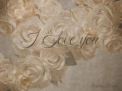 Amor para todos. (Marilina Ramón) Tags: amor sanvalentín rosas romanticismo textura españa love valentinesday roses romanticism texture spain sonydscw210