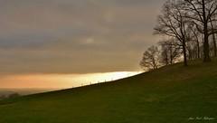 Evening landscape.. (jean-paul Falempin) Tags: nuages ciel arbres paysage sunset