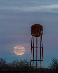 Super Snow Moon Rising (Alan Comer) Tags: supermoon supersnowmoon moonrise