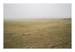 Husby Klit, Denmark, 2019 (csinnbeck) Tags: m10 eosm10 22mm 35mm canon denmark fog mist foggy fields roads road winter february north sea digital landscape jutland westcoast west eosm grass sand