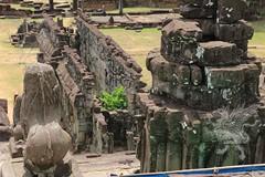 Angkor_Bakong_2014_36