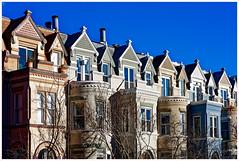 "DC's ""Painted Ladies"" (Rex Block) Tags: dcpaintedladies nikon d750 dslr 85mm f18g washington dc street 13thstreet shaw ustreet homes facades victorian blue sky"