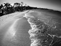 Puerto Plata Beach II (MassiveKontent) Tags: beach ocean silhouette dominicanrepublic palmtrees landscapephotography monochrome bw tropics atlantic noir sky clouds shadows contrast noiretblanc blackwhite blancoynegro blackandwhite bwphotography gopro absoluteblackandwhite mono puertoplata dr waves sea
