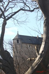 IMG_7873 (Pfluegl) Tags: graz steiermark styria österreich austria europa europe eu hiking wandern stadt chpflügl chpfluegl christian