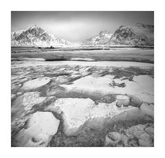 Northern Elements (W.Utsch) Tags: lofoten norway winter ice snow mountains bnw blackandwhite schwarzweiss structures tilt shift nikon sony stich beach