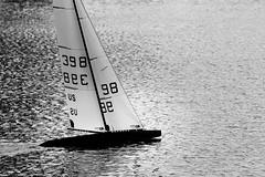 Speckles on Spreckels (muzza_buck) Tags: 10r 10rater sailing radiocontrol model lake shadow boat sailboat yacht sfmyc monochrome sigma150500 silverefex blackandwhite