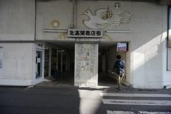 20190320a73_6199 (Gansan00) Tags: lce7m3 α7ⅲ sony japan 大分県 oita 日本 beepu 別府 landscape snaps ブラリ旅 03月 fe24105f4