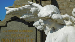DSCN6142 Montfarville (Manche) (Thomas The Baguette) Tags: barfleur montfarville valdesaire rape colza cotentin manche lamanche lemoulard lasambiere calvaire oratoire crabec moulin