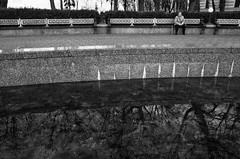 Adventures with Ricoh - Kiev - 4. (ḆΞ₪¡) Tags: ricohgr ricoh gr digital kiev ukraine 2017 blackandwhite monochrome mono bw adventureswithricoh old lady park tree shadow highcontrast winter city