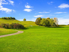 Frühling (Michael-Prietz) Tags: wiese laubbaum olympiagelände hügel gehölz münchen bayern olympiapark grün green