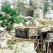 Çatalhöyük (4 August 1993) 24