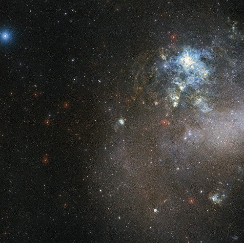 Stars Forming in the Large Magellanic Cloud