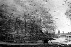 le château dans l'eau (asketoner) Tags: castle water reflection winter puddle trees park brussels belgium roof building daylight trouble