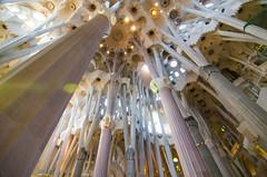 Barcelona2013-184 (Wytse Kloosterman) Tags: 2013 barcelona wytse herfstvakantie vakantie
