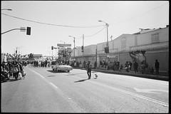 (GIANTORRES) Tags: leica m6 lhsa 35mm black white mlk parade 2019 martin luther king film ilford hp5 plus 28mm elmarit 28 asph negative leimant park